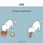 котки в социалните мрежи
