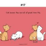 Забавно животни в социалните мрежи